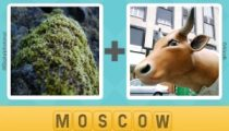 Pictoword Countries & Cities Level 2 Answers